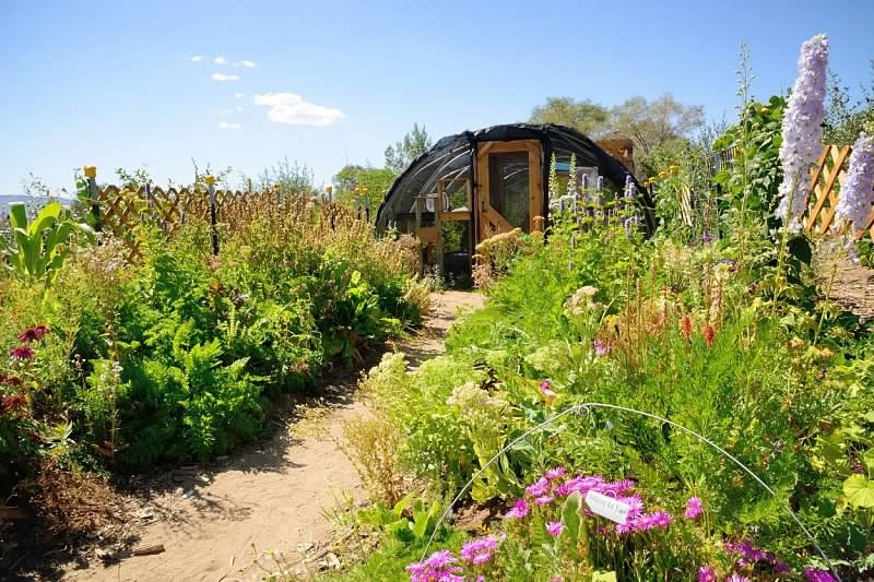 Lush pathways welcome visitors into the butterfly house