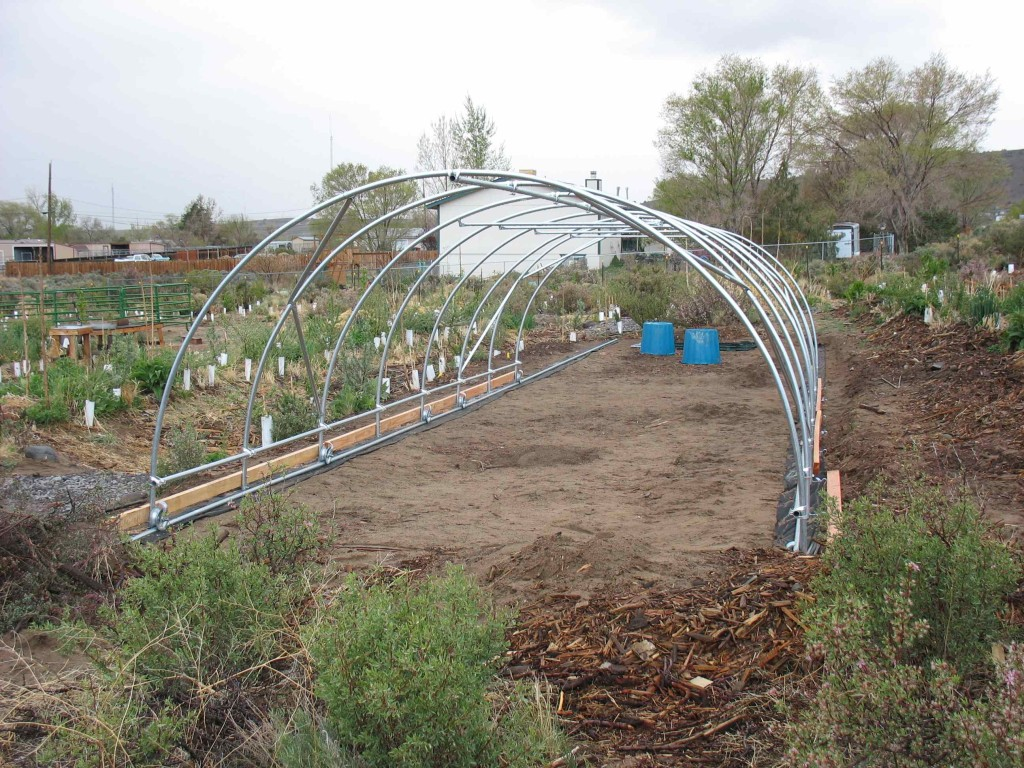 Newly constructed hoophouse, taking up half of the rails