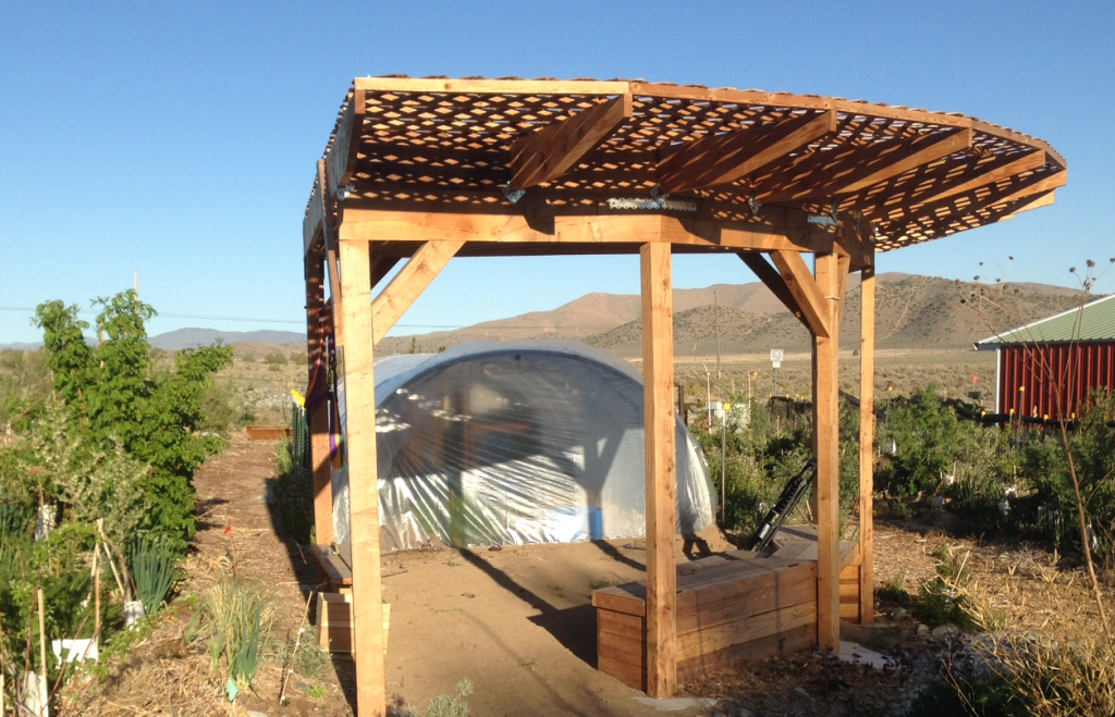 Hoophouse, this year, in its new location