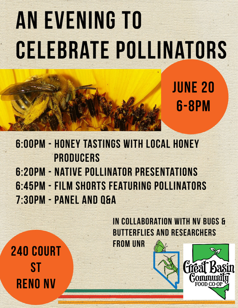 Pollinators are responsible for creating 1/3 of the food consumed by humans every day!