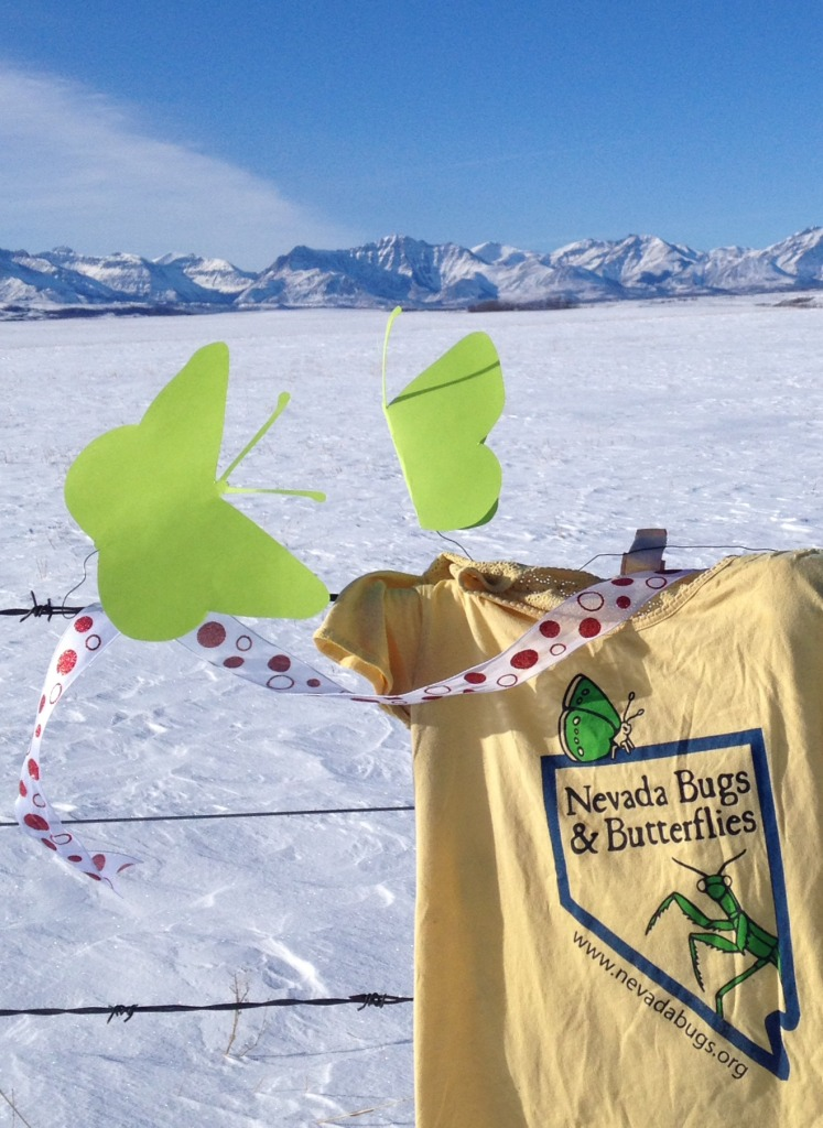 Our shirts go well with mountains!