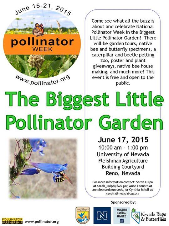 UNR pollinator flyer 2015